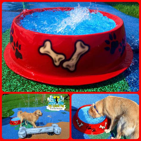 puppy pad spray bowl portable water play features for your splash pad