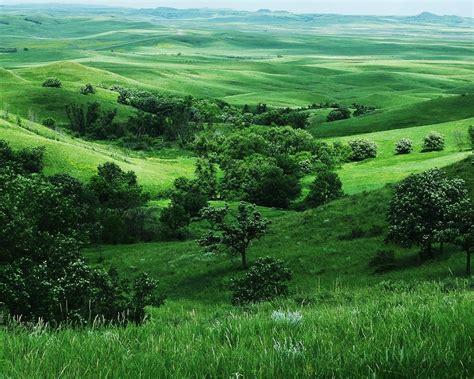 我从草原来 美丽的草原我的家 唯美草原风景图片 非主流图片
