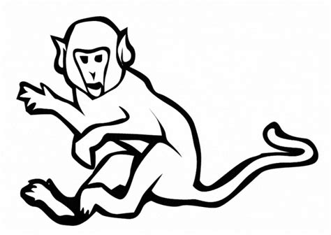 japanese macaque coloring page snow monkey coloring page free coloring pages of snow monkey