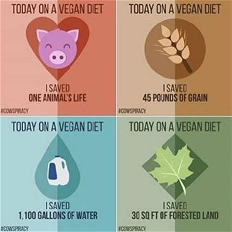 veganism in an oppressive world a vegans of color community project books 44 best images about animal rights caign vegan cx on