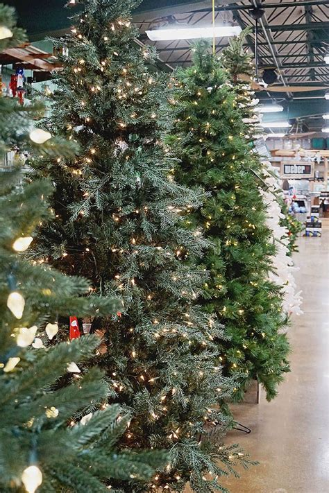 cost of christmas trees at orchard hardware creative decor ideas that you t thought of yet
