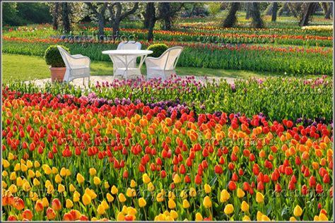 Britzer Garten Kontakt by Berlin Britzer Garten Tulipan Page Beste