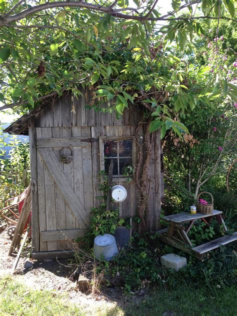 Country Garden Sheds by 17 Best Images About Funky Dante Shed On Tool