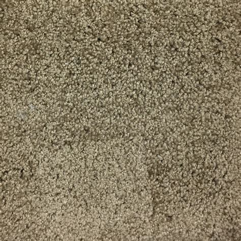 truffle color colors carpet mantra truffle factory expo home centers