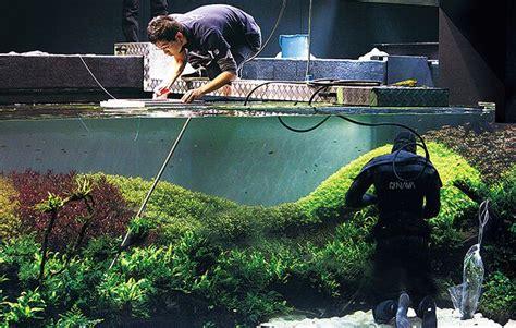 takashi amano aquascape the world s largest nature aquarium project takashi amano x ocean 225 rio de lisboa