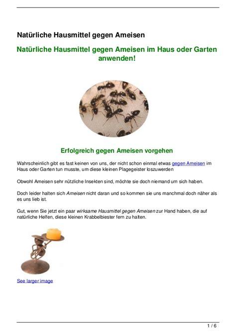 hausmittel gegen ameisen im garten 4356 nat 252 rliche hausmittel gegen ameisen