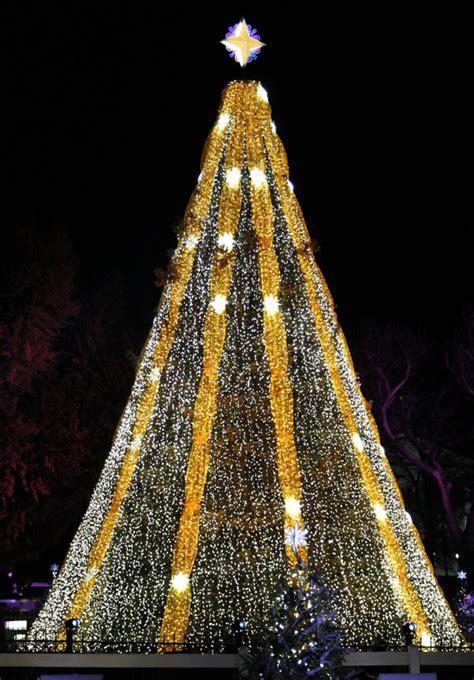 spectacular christmas trees    world