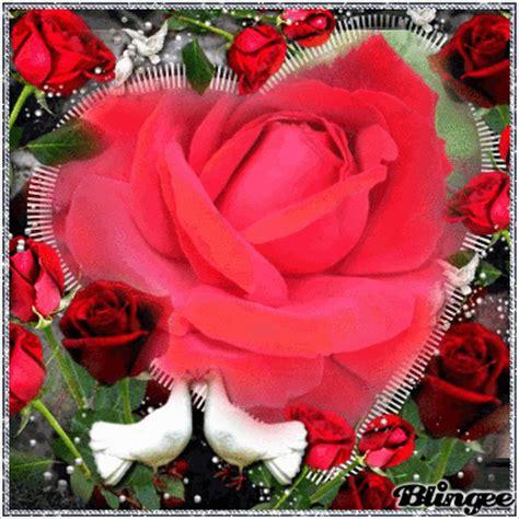 imagenes de dios luminosas rosas rojas fotograf 237 a 127684762 blingee com