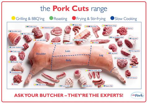 diagram of pork cuts of pork cuts pig diagram poster high quality silk wall poster