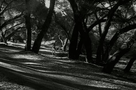 best ghost world s scariest ghost stories hypebeast
