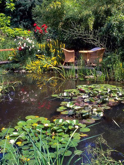 Garten Bilder 4781 by Ab In Den Teich Seite 2 Juni 2017 Familienheim Und