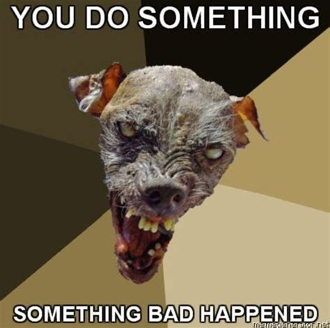 Ugly Dog Meme - cynical dog know your meme