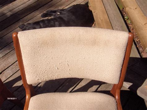 upholstery dry cleaning upholstery dry clean services