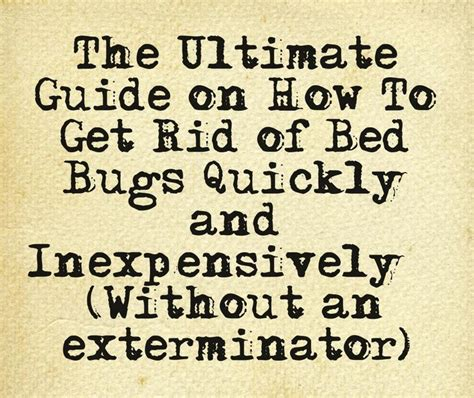how to get rid of bed bugs yourself how to get rid of bed bugs yourself quickly and