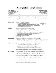 sle of a guidance counselor resume