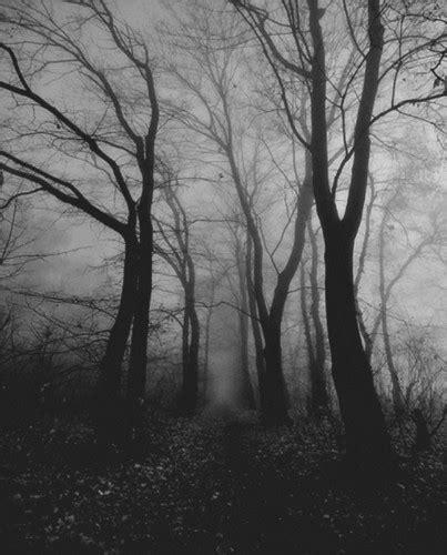 imagenes goticas blanco y negro imagenes en blanco y negro gotico im 225 genes taringa