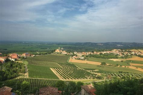 Camino Monferrato by Piedmont Discovering The Quot Unknown Quot Monferrato Winery