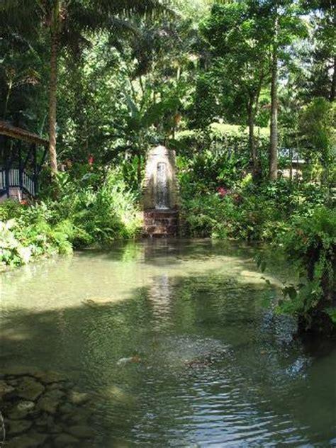 River Garden by Coyaba River Garden And Museum Tourist Attractions In Ocho Rios Jamaica Rainforest Adventures