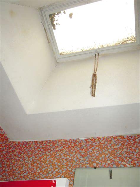 skylight in bathroom problems the magical mildew tour my ugly bathroom delightfully