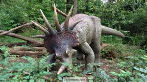 Wallpaper images matching styracosaurus
