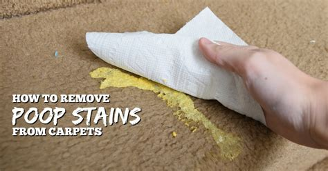 how to remove rug stains remove baby stains and smells from carpets with this diy solution