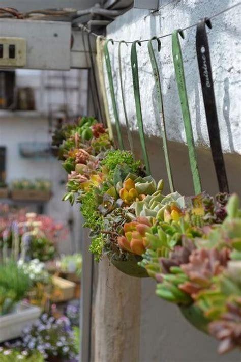 Indoor Succulent Garden Ideas Creative Indoor And Outdoor Succulent Garden Ideas 2017