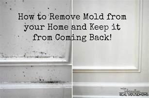 How To Prevent Mould In Bedroom by How To Get Rid Of Mold In Bedroom Farmersagentartruiz