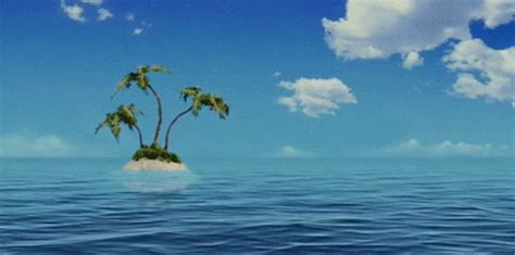 Palm Tree Wall Sticker spongebob squarepants gif find amp share on giphy