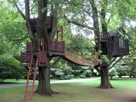 Landscape Structures Treehouse 30 Tree Perch And Lookout Deck Ideas Adding Diy