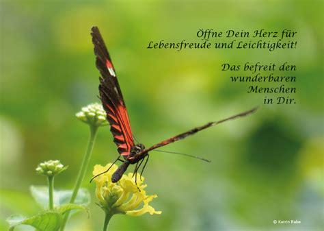 Bilder Lebensfreude by 214 Ffne Dich F 252 R Lebensfreude Krreativ Naturheilpraxis