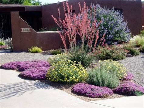 waterwise landscapes contemporary landscape