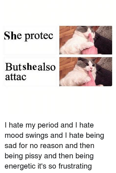 mood swings for no reason she protec but she also attac i hate my period and i hate