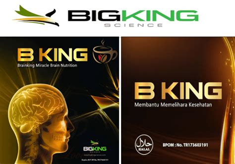 Brainking Plus Original agen resmi brainking plus original terbaik di kupang ntt