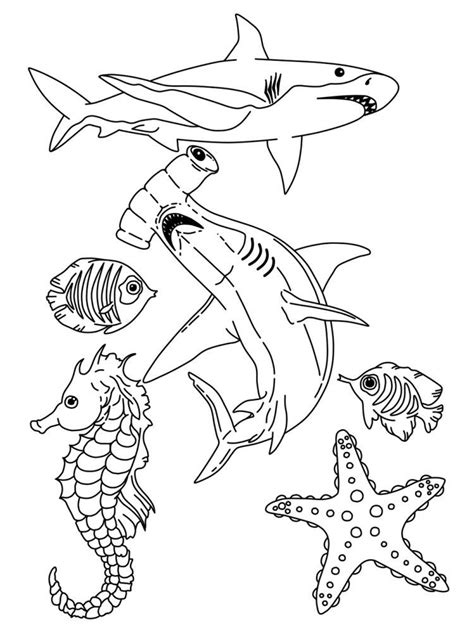 coloring book pages sea life sea life coloring page coloring home