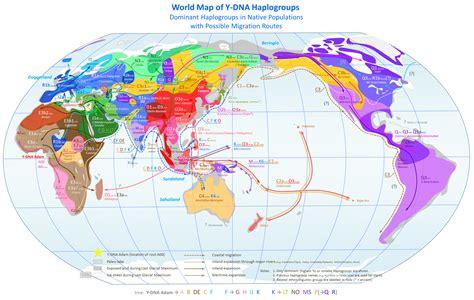 world map   dna haplogroups  mapporn