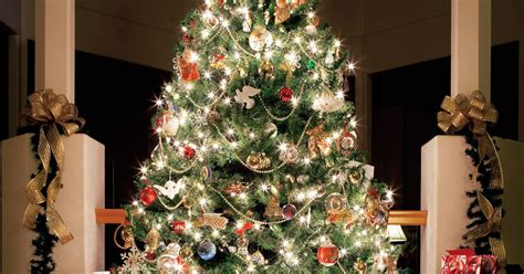 You Decorated by 20 Of The Most Beautifully Decorated Trees