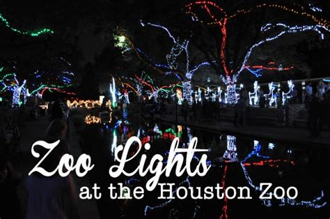 zoo lights at the houston zoo clumsy crafter