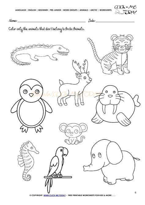 printable worksheets animals arctic animal worksheet for kindergarten arctic best