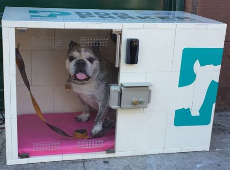 temperature controlled dog house the startup renting on demand dog houses by the minute