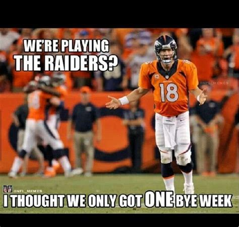 Funny Bronco Memes - 116 best nfl memes images on pinterest football humor