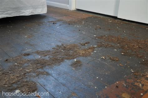 How To Get Black Glue Hardwood Floors how to remove carpet glue from asbestos tiles carpet