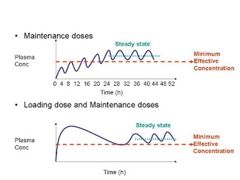 creatine loading dose 02 05 5 maintenance doses and loading doses pharmacology