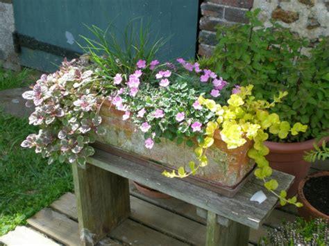 Merveilleux Plantes Vivaces En Jardiniere #2: jardiniere-de-vivaces-resized.jpg