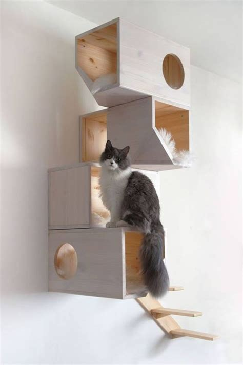 catissa wall mounted cat tree solid wood and sheepskin