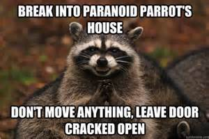 Excellent Raccoon Meme - evil raccoon excellent bing images