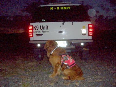 visiglo lighted leash lora s doggie hut visiglo illuminated collars and leashes