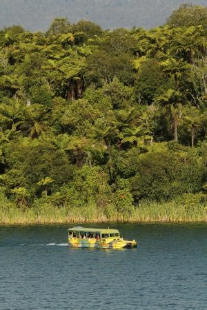 duck boat rotorua rotorua duck tours 2018 all you need to know before you