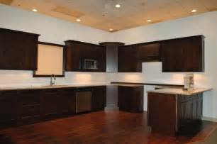 Java Kitchen Cabinets by 1v Java Maple Shaker Cabinets In Days Contemporary