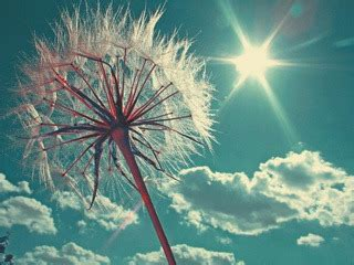 themes for huawei g6310 download free sun rays power mobile mobile phone wallpaper