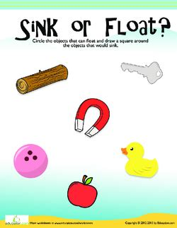 Objects That Sink And Float by Sink Or Float Lesson Plan Education